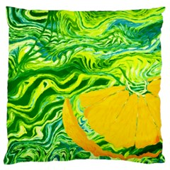 Zitro Abstract Sour Texture Food Standard Flano Cushion Case (one Side)