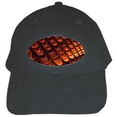 Fractal Mathematics Frax Black Cap