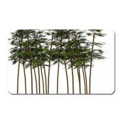 Bamboo Plant Wellness Digital Art Magnet (rectangular)