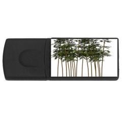 Bamboo Plant Wellness Digital Art Usb Flash Drive Rectangular (4 Gb)