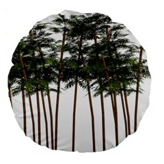Bamboo Plant Wellness Digital Art Large 18  Premium Round Cushions