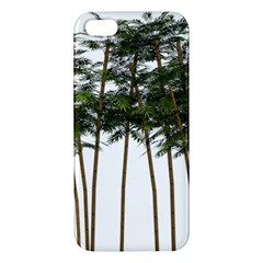 Bamboo Plant Wellness Digital Art Apple Iphone 5 Premium Hardshell Case