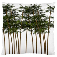 Bamboo Plant Wellness Digital Art Large Flano Cushion Case (two Sides)