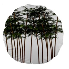 Bamboo Plant Wellness Digital Art Large 18  Premium Flano Round Cushions