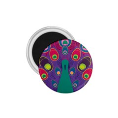 Peacock Bird Animal Feathers 1 75  Magnets