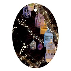 Qingdao Provence Lights Outdoors Oval Ornament (two Sides)