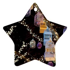 Qingdao Provence Lights Outdoors Star Ornament (two Sides)