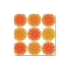 Orange Discs Orange Slices Fruit Square Magnet