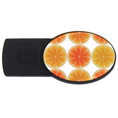 Orange Discs Orange Slices Fruit USB Flash Drive Oval (1 GB)