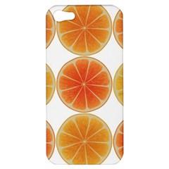 Orange Discs Orange Slices Fruit Apple Iphone 5 Hardshell Case