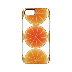Orange Discs Orange Slices Fruit Apple Iphone 5 Classic Hardshell Case (pc+silicone)