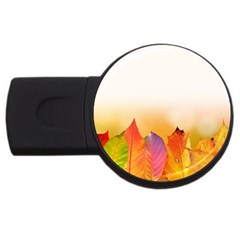 Autumn Leaves Colorful Fall Foliage Usb Flash Drive Round (2 Gb)