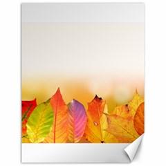 Autumn Leaves Colorful Fall Foliage Canvas 12  X 16