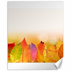 Autumn Leaves Colorful Fall Foliage Canvas 11  X 14