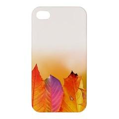 Autumn Leaves Colorful Fall Foliage Apple Iphone 4/4s Premium Hardshell Case