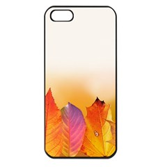 Autumn Leaves Colorful Fall Foliage Apple Iphone 5 Seamless Case (black)