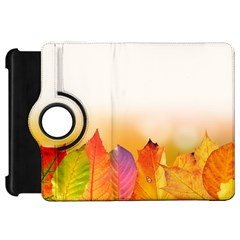 Autumn Leaves Colorful Fall Foliage Kindle Fire Hd 7