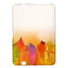 Autumn Leaves Colorful Fall Foliage Kindle Fire Hd 8 9