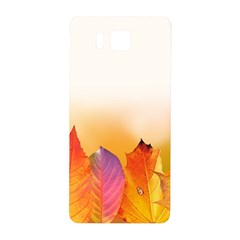 Autumn Leaves Colorful Fall Foliage Samsung Galaxy Alpha Hardshell Back Case