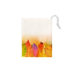 Autumn Leaves Colorful Fall Foliage Drawstring Pouches (xs)