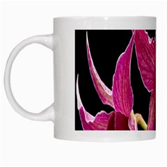 Orchid Flower Branch Pink Exotic Black White Mugs