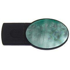 Background Texture Structure Usb Flash Drive Oval (2 Gb)