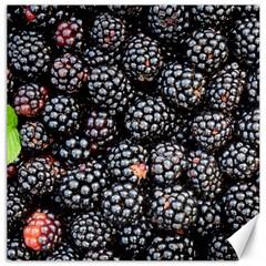 Blackberries Background Black Dark Canvas 20  X 20