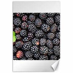 Blackberries Background Black Dark Canvas 24  X 36