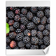 Blackberries Background Black Dark Canvas 11  x 14