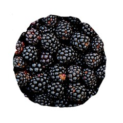 Blackberries Background Black Dark Standard 15  Premium Round Cushions