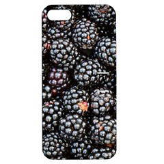 Blackberries Background Black Dark Apple Iphone 5 Hardshell Case With Stand