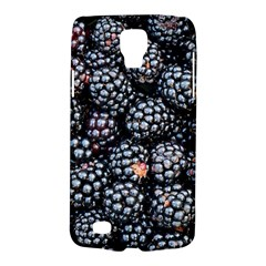 Blackberries Background Black Dark Galaxy S4 Active