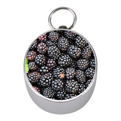 Blackberries Background Black Dark Mini Silver Compasses