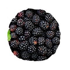Blackberries Background Black Dark Standard 15  Premium Flano Round Cushions