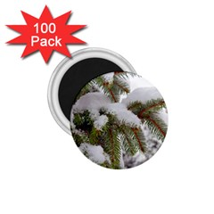 Brad Snow Winter White Green 1 75  Magnets (100 Pack)