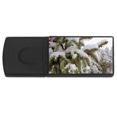 Brad Snow Winter White Green USB Flash Drive Rectangular (1 GB)