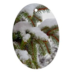 Brad Snow Winter White Green Oval Ornament (two Sides)