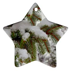 Brad Snow Winter White Green Star Ornament (two Sides)