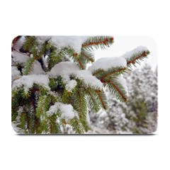 Brad Snow Winter White Green Plate Mats
