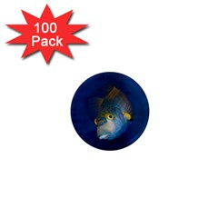 Fish Blue Animal Water Nature 1  Mini Magnets (100 Pack)