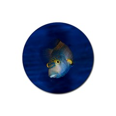 Fish Blue Animal Water Nature Rubber Coaster (Round)