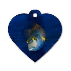 Fish Blue Animal Water Nature Dog Tag Heart (two Sides)