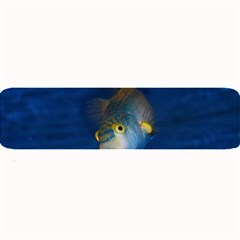 Fish Blue Animal Water Nature Large Bar Mats