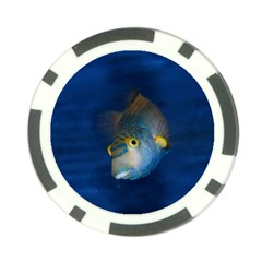 Fish Blue Animal Water Nature Poker Chip Card Guards