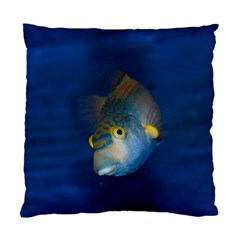 Fish Blue Animal Water Nature Standard Cushion Case (two Sides)