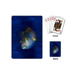 Fish Blue Animal Water Nature Playing Cards (Mini)