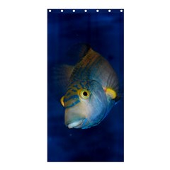 Fish Blue Animal Water Nature Shower Curtain 36  X 72  (stall)