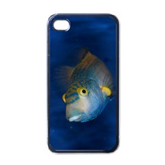 Fish Blue Animal Water Nature Apple Iphone 4 Case (black)