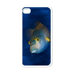 Fish Blue Animal Water Nature Apple Iphone 4 Case (white)