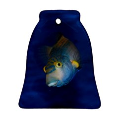 Fish Blue Animal Water Nature Ornament (bell)